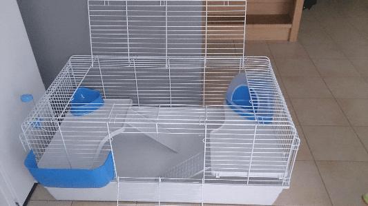 cage d'intérieur little friends paris