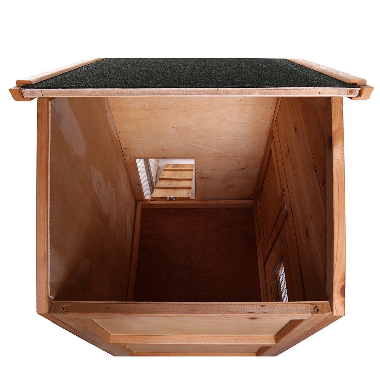 vue d'intérieur de la cage dibéa