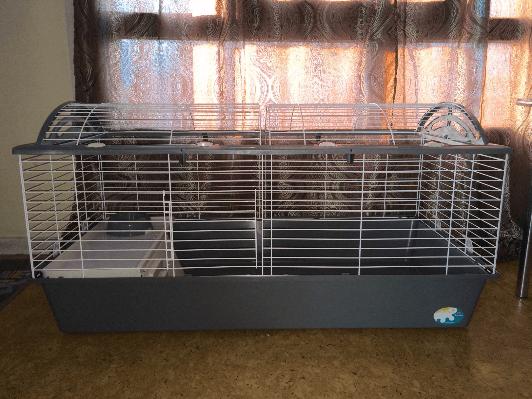 cage ferplast casita intérieur de face