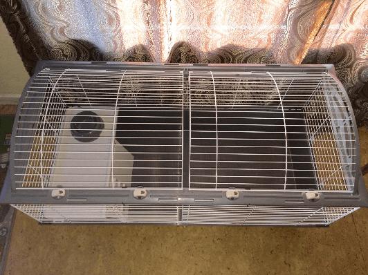 cage ferplast casita en intérieur