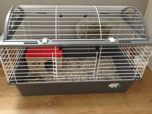 cage ferplast casita 80 installée