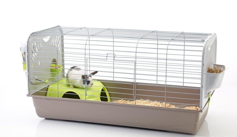cage savic caesar avec rongeur