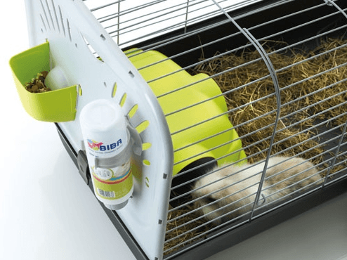 cage savic caesar avec lapin